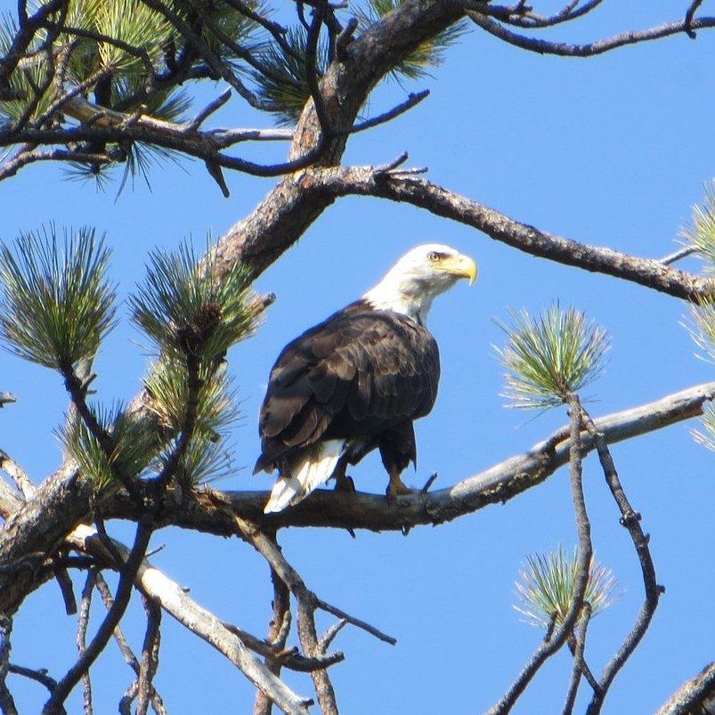 big-arm-state-park-montana
